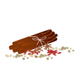 Star Anise with Cinnamon Sticks and Peppercorn vector image vector image
