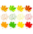 Set of autumn maple leaves vector image