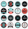 Set Of Vintage Label vector image