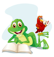 A frog and a bird reading vector image vector image