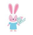 bashower female rabbit with dress and flowers vector image