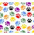 beautiful background with colored prints of cat vector image vector image