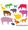 colorful farm animals and birds silhouettes vector image