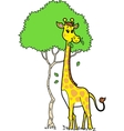 Cute Giraffe Eating Leaves vector image vector image
