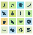 food icons set with blueberry pattionson vector image
