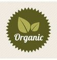 organic product vector image