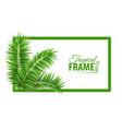 tropical banner frame design vector image vector image