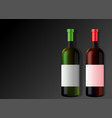 two bottles wine vector image