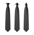 black business neck ties with different styles of vector image