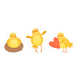 funny chicken in different situations set cute vector image vector image