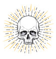 human skull over sacred geometry symbol demon vector image vector image
