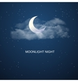 Night sky background vector image vector image