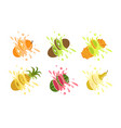 sweet tropical fruits and splashes set orange vector image