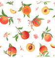 watercolor peach seamless pattern tropic fruits vector image