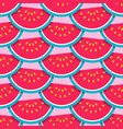 watermelon pattern tropical fruit texture vector image