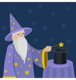 Magician with a magic wand and cylinder vector image