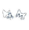 curious cat hides and peeps sticker on a car or a vector image vector image