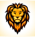 lion head color design vector image