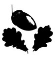 oak leaf acorn and branch isolated silhouette vector image