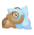 sloth embrace pillow icon cartoon style vector image