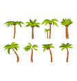 cartoon color palma tree icon set vector image vector image