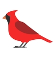 flat bird isolated on white background beautiful vector image vector image