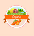 fresh carrot label or sticker vector image vector image