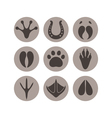Paw print Icon set vector image vector image