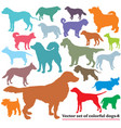 set colorful dogs silhouettes-8 vector image vector image