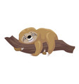 sloth kid icon cartoon style vector image