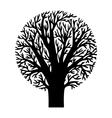 figure tree vector image vector image