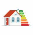 House Energy Efficiency Icon vector image