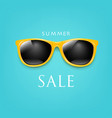 sale poster sunglasses and mint background vector image vector image