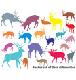 set colorful deer silhouettes-2 vector image vector image