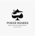 vintage modern poker and shark logo vector image vector image