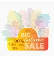 Autumn sale banner with discount vector image