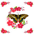 butterfly and red flower background image vector image vector image