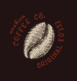cacao beans or grain coffee shop logo and emblem vector image vector image