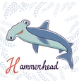 H is for Hammerhead vector image vector image