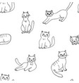 seamless pattern with hand drawn cute cats vector image