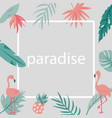 beach tropical invitation card with flamingos vector image