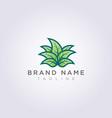 creative leaf plant logo design for your business vector image