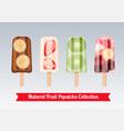 fruit popsicles transparent set vector image vector image