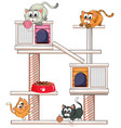 many cats on cat condo vector image vector image