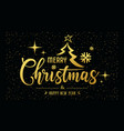 merry christmas message golden at star night vector image vector image