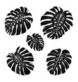 monstera leaf outline black silhouettes tropical vector image