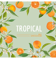 Orange Flowers and Leaves Exotic Graphic Tropical vector image