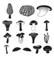 poisonous and edible mushroom black icons in set vector image vector image