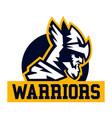 warrior logo viking invader knight face vector image
