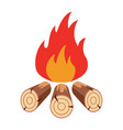 bonfire flame vector image